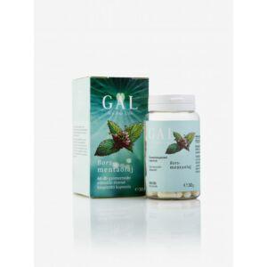 GAL Borsmentaolaj 100 mg x 60 kapszula