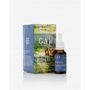 GAL K2+D3 vitamin, 500 mcg K-komplex + 4000 NE D3 x 60 adag