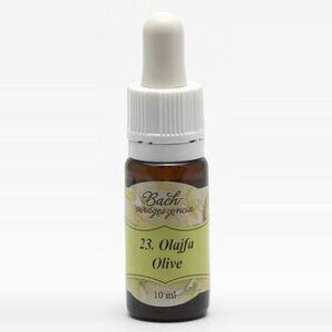 Bach virágterápia, 10 ml - Olajfa, a megújhodás virága - 23-as