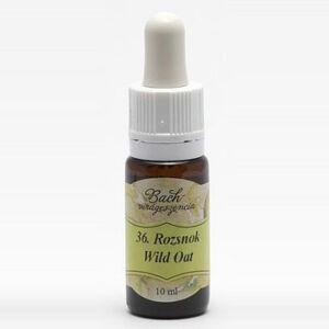 Bach virágterápia 10 ml  Ágas rozsnok az elhivatottság virága  36os