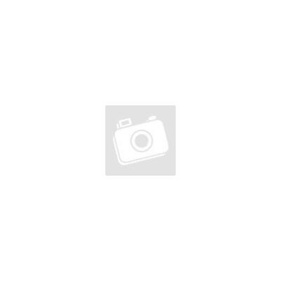 Basilur Magic Fruits Almafahéj szálas tea 100 gr  71315